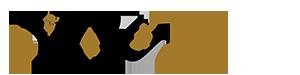 pyoudm_logo